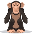 Funny little monkey vector image vector image