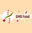 genetically modified food vector image vector image