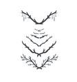hand drawn vintage floral laurels set of vector image vector image
