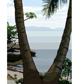 palm tree on the sea shore vector image