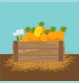 pineapple in a wooden crate vector image vector image