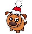 puppy on christmas time cartoon vector image vector image