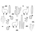 set alpaca and cactus elements vector image