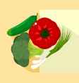 vegetables and green onions vector image vector image