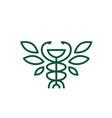 hygiea bowl caduceus leaf pharmacy medicine vector image vector image