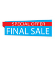 special offer final sale banner on white vector image vector image