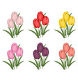 vintage tulips flowers set background vector image vector image