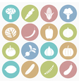 white icons vegetable vector image