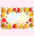 autumn season colorful fall leafs greetings card vector image