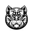cute cat head mascot silhouette vector image vector image