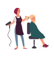 female hairdresser blow-dry with hairdryer hair of vector image