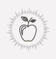 fruit healthy food vector image vector image