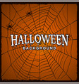 halloween background with web of spider vector image vector image