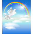 pigeon or peace dove vector image