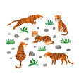 set tigers leaves and stones vector image vector image