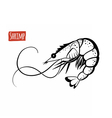 Shrimp black and white vector image vector image
