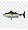 tuna fish mockup realistic style vector image vector image