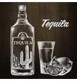 bottle tequila with lime and glass painted by vector image vector image
