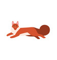 colored cartoon running maine coon cat flat vector image vector image