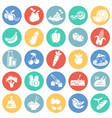 healthy food icons on color circles white vector image