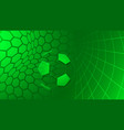 soccer background in green colors vector image vector image