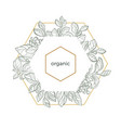 template hexagon organic vector image vector image