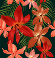 Amaryllis seamless pattern vector image vector image