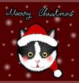 black white cat santa claus greeting card vector image vector image