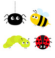 cute cartoon insect set ladybug lady bird vector image vector image