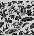 seamless pattern with hand drawn stylized monstera vector image