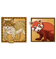 Tiger and red panda on square badges vector image vector image