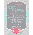 Baby-Shower CountryChic vector image vector image