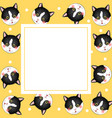 black white cat on yellow banner card vector image vector image