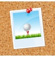 board with a photo a Golf ball vector image vector image