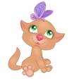 red kitten with butterfly vector image vector image