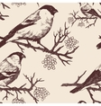 seamless bullfinch pattern hand drawn vector image