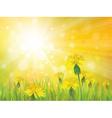 spring yellow sun vector image vector image