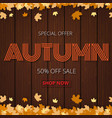 autumn sale poster or banner for shopping vector image