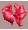 beautiful silk bow vector image vector image