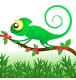 Fun chameleon baby vector image vector image