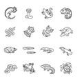 reptiles and amphibians icons set line design vector image vector image