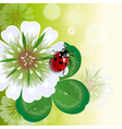 trefoil with ladybug vector image vector image