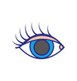 colorful vision eye with eyelashes style design vector image vector image