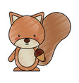 cute chipmunk woodland animal vector image vector image