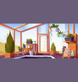 greenhouse interior with potted plants on shelves vector image