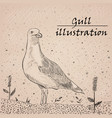 gull ink on white background vector image