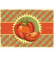 Red tomatos Vintage label vector image