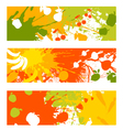 abstract fruit vegetable banners vector image vector image