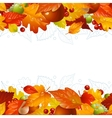 autumn background with fall leaf vector image vector image