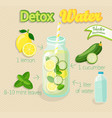 detox cocktail vector image vector image